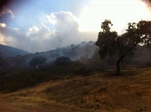 Imagen del fuego de la Sierra de los Santos. Al fondo, un helicóptero en las labores de extinción. - Foto:CORDOBA