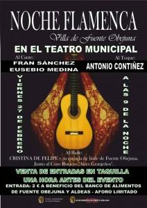 Noche flamenca `Villa de Fuente Obejuna`