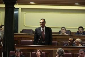 Antonio Luis Amaro, Parlamentario