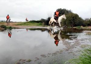 El raid hípico de Fuente Obejuna estrena un nuevo trazado - RAMÓN AZAÑON
