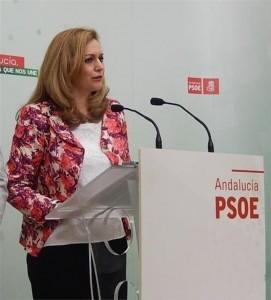 El PSOE reclama al Gobierno que reactive el Miner - Foto: EUROPA PRESS