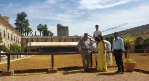 Silvia Mellado, Rafael Blanco y Javier Gómez, durante una visita por las Caballerizas Reales. - REDACCIÓN