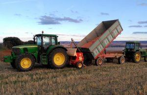 Piden alterar la orden contra el mosquito del trigo